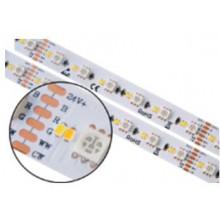 Moniväri + CCT Värilämpö LED-Nauha - 24V/20W
